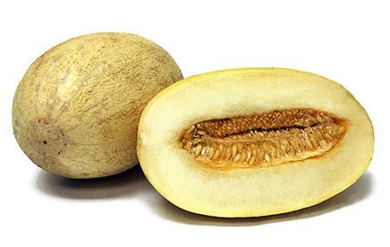 Melons of Uzbekistan
