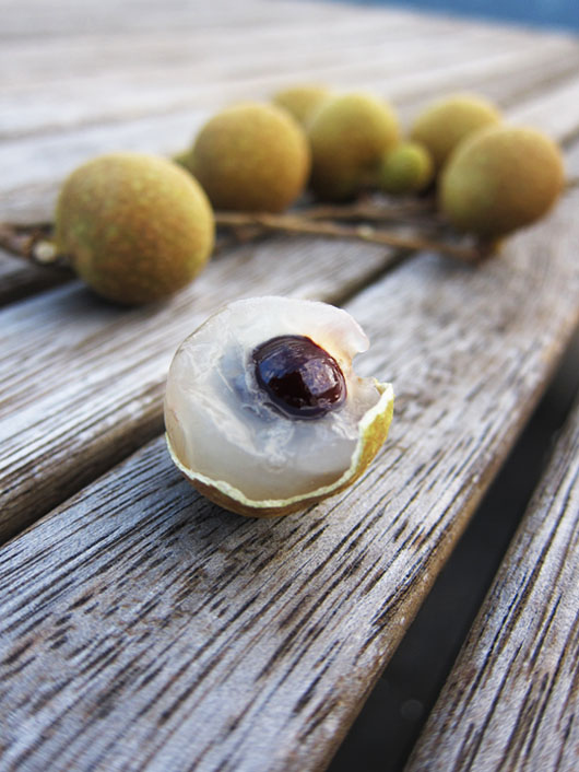 Longan, sometimes known as Dragon Eye